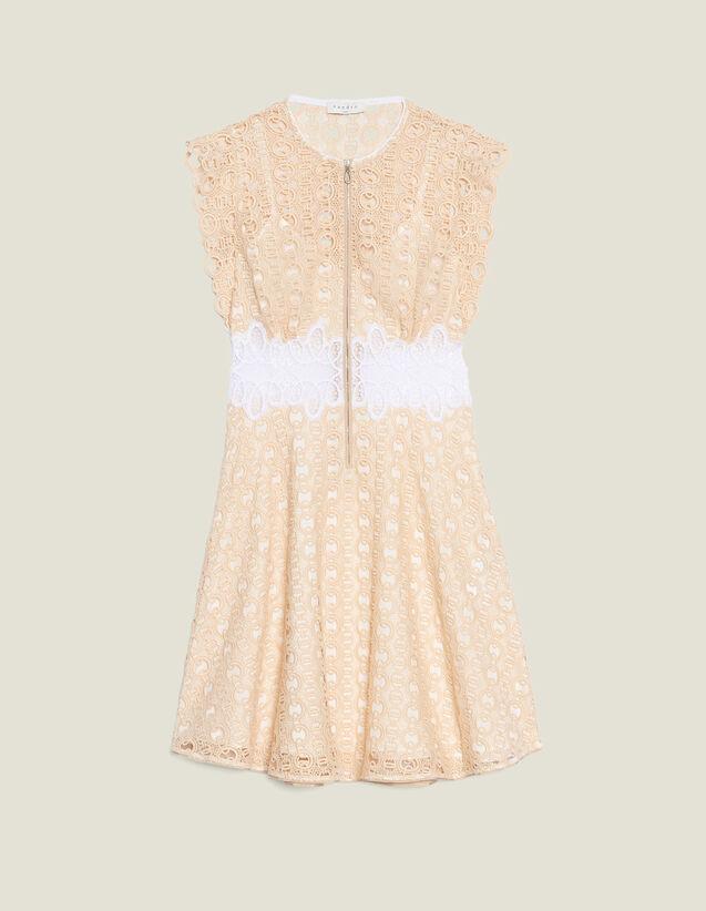 Kurzes Kleid Aus Gipürespitze : Kleider farbe Elfenbein