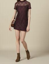 Kurzes Kleid aus Spitze : LastChance-ES-F40 farbe Pflaume